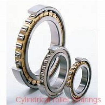 1.337 Inch | 33.972 Millimeter x 2.441 Inch | 62 Millimeter x 0.669 Inch | 17 Millimeter  ROLLWAY BEARING 1305-B  Cylindrical Roller Bearings